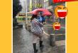 funny_20170119_600_001