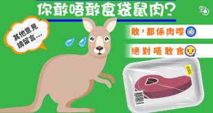 kangaroo_20170217_600_001